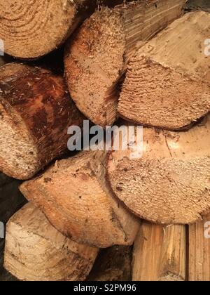 Logs - Stock Image