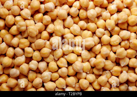 Chick Peas Background. Top view of soaked chickpeas. - Stock Image
