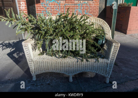 New York, NY, USA 2 Januay 2018 - Discarded Christmas tree sits by the curb , in a wicker loveseat, awaiting recycling. - Stock Image