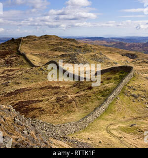Long meandering drystone wall following the undulations of Lingmoor Fell, Langdale, Lake District, Cumbria, England, UK - Stock Image