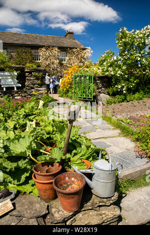 UK, Cumbria, Hawkshead, Near Sawrey, Hill Top Farm, Beatrix Potter's home, vegetable garden, spade, flower pots and watering can at rhubarb clump - Stock Image