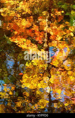 Autumn reflections in Acadia National Park in Maine - Stock Image