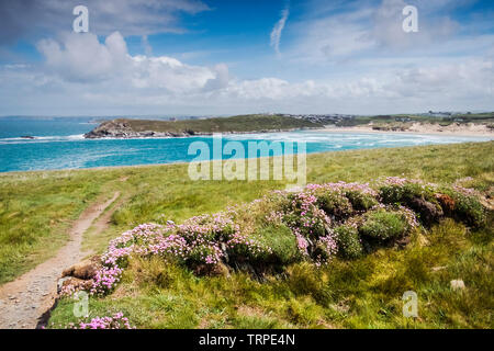 The award winning Crantock Beach seen from Pentire Point West in Newquay in Cornwall. - Stock Image
