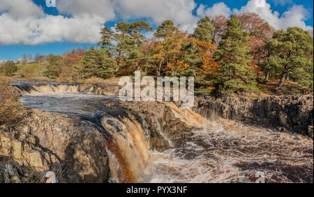 North Pennines AONB Landscape, panoramic view of Low Force Waterfall, Teesdale from the Pennine Way with autumn colours and bright sunshine - Stock Image