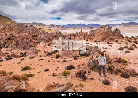 Argentina, Catamarca province, Laguna Grande near El Penon is part of Laguna Blanca reserve listed as Reserve Biosphere by UNESCO - Stock Image