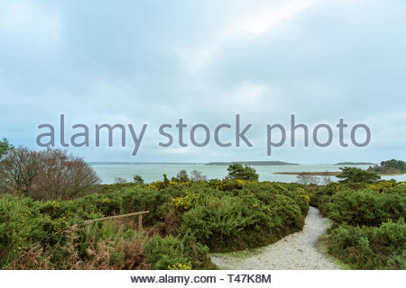 View of Poole Harbour from RSPB Arne reserve - Stock Image