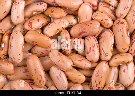 Pinto beans full frame background close up. - Stock Image