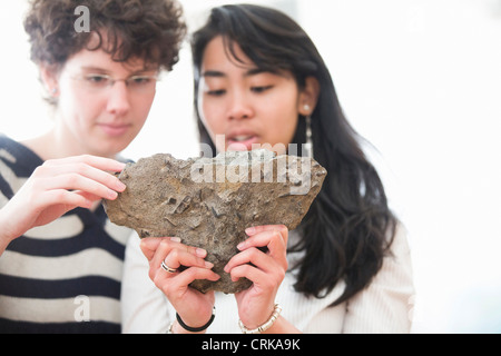 Students working in geology lab - Stock Image