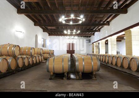 barrel aging cellar chateau trottevieille saint emilion bordeaux france - Stock Image
