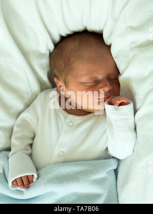 New born baby boy asleep - Stock Image