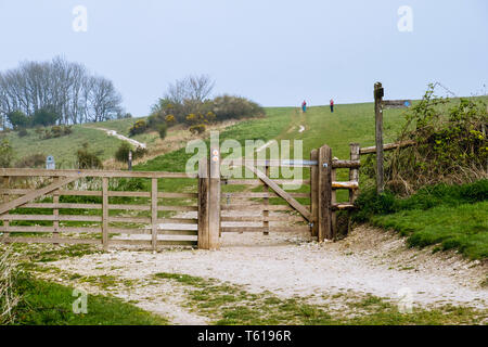 Gate on footpath to Harting Down in South Downs National Park. South Harting, West Sussex, England, UK, Britain - Stock Image