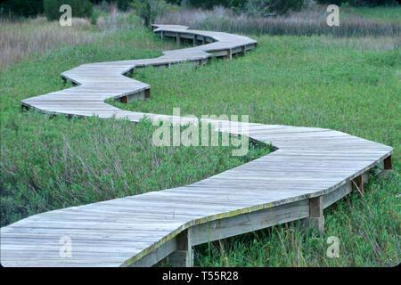 Florida Amelia Plantation raised boardwalk over coastal marsh - Stock Image