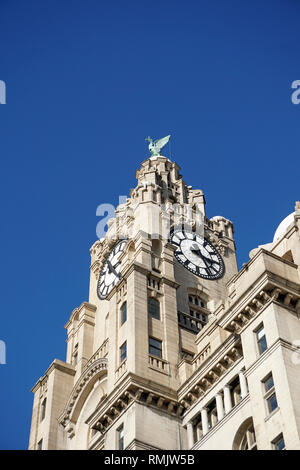 Top Of The Royal Liver Building, Liverpool. - Stock Image