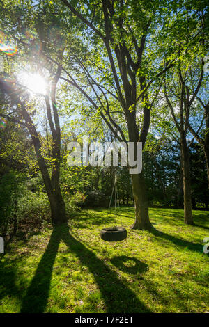 Beautiful Backyard Spring Day With Tire Swing - Stock Image