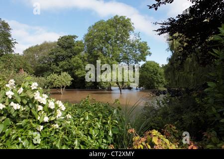 Weymouth Rains Flood Someones Garden in Dorset - Stock Image