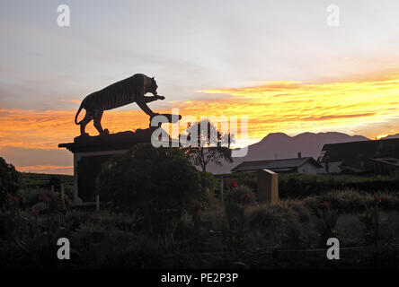 tiger statue at entrance to park at sunrise  Kerinci Seblat NP, Sumatra, Indonesia         June 2014 - Stock Image