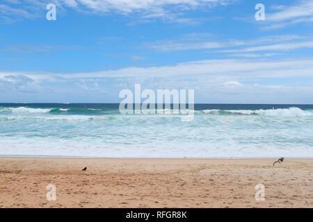 Landscapes. Beautiful morning at Barra beach. Barra de Tijuca beach. Rio de Janeiro. Brazil - Stock Image