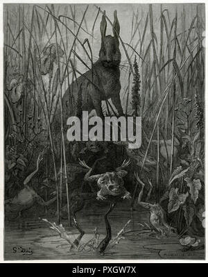 THE HARE AND THE FROGS The timid hare discovers that there are creatures even more timid than himself - one of Dore's most powerful images.      Date: circa 1870 - Stock Image