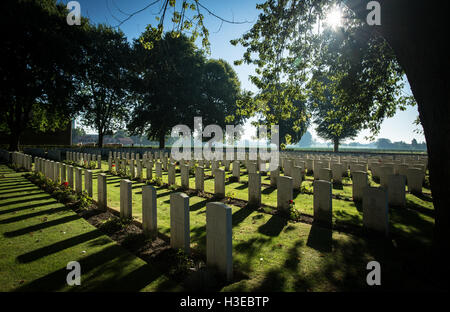 Morning light breaking through the trees and over the gravestones at Vlamertinghe Military Cemetery, Ypres, Belgium - Stock Image
