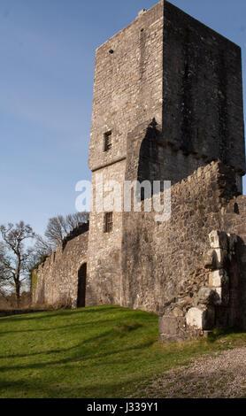 Mugdock Castle,Milngavie, nr Glasgow - Stock Image