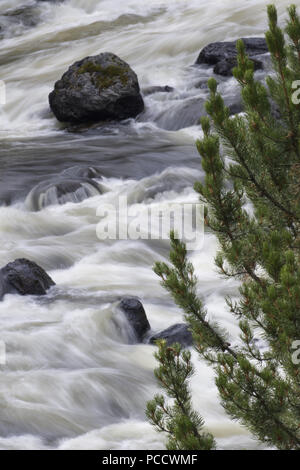 Beautiful silky water look, dark boulders, and rushing currents of Firehole River in Yellowstone National Park. - Stock Image