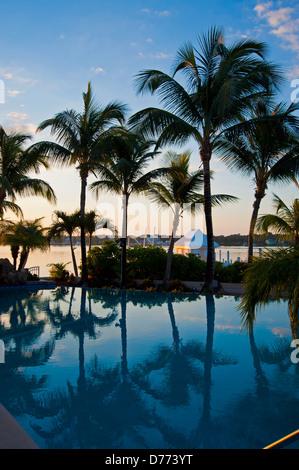 Swimming Pool Bahamas Palm Trees Beach - Stock Image