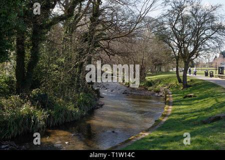 River Sheaf flowing through Millhouses Park, Sheffield UK - Stock Image
