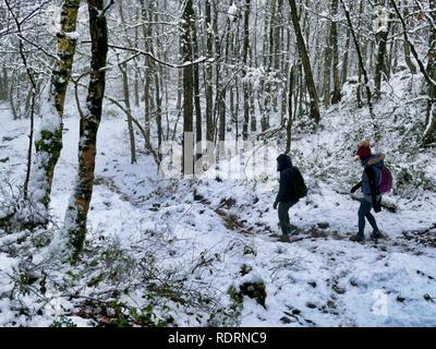 Derbyshire, Peak District National Park, UK, January 2018UK Weather: walkers enjoying the snowy wintery weather Black Rocks, Big Plantation, Derbyshire, Peak District National Park Credit: Doug Blane/Alamy Live News Credit: Doug Blane/Alamy Live News - Stock Image