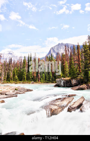 Rushing waters from the Kicking Horse River carves through the rocks at Natural Bridge in Yoho National Park in the Canadian Rockies. - Stock Image