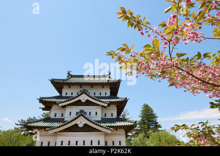 Detail of Hirosaki castle framed by cherry blossoms, in the foreground. Hirosaki, Aomori Prefecture, Japan. - Stock Image