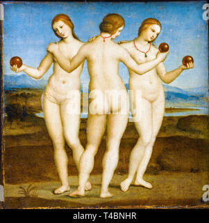 Raphael, The Three Graces, painting, c. 1503 - Stock Image