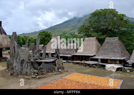 Despite being Catholic, people in Bena still conduct ancient rituals on these megalithic altars. Bena, Flores Island, Indonesia. - Stock Image