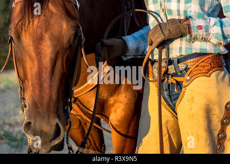 USA, California, Parkfield, V6 Ranch close-up, of cowgirl and her horse (MR) - Stock Image
