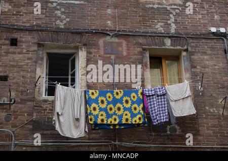 clothes hanging out to dry on a washing line in siena, Italy on an old building in disrepair, one bed sheet with sunflowers on it - Stock Image