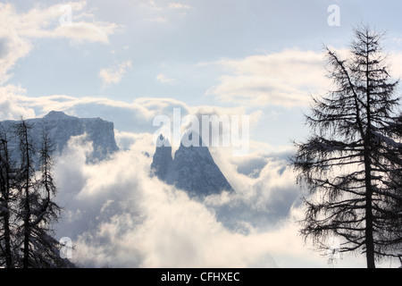 Mount Schlern / Sciliar, Seiser Alm / Alpe di Siusi, South Tyrol, Italy - Stock Image