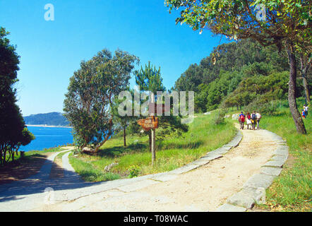 Way to the lighthouse. Cies Islands, Atlantic Islands National park, Pontevedra province, Galicia, Spain. - Stock Image