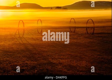 A farm field with irrigation pipe at sunrise near Tulelake, California. - Stock Image