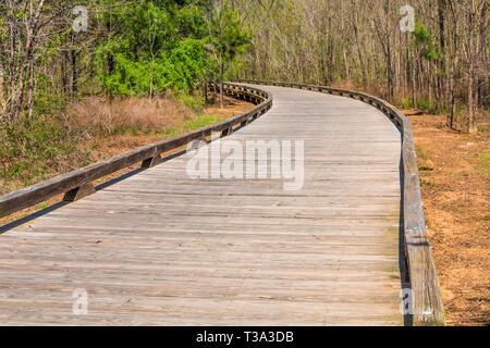 Curve in Wood Walkway - Stock Image