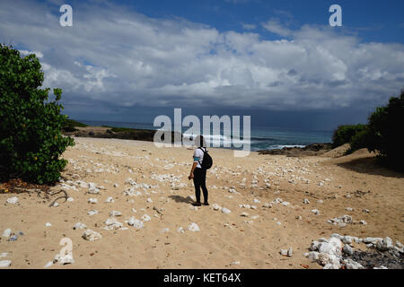 Hiking on Ka'ena Point Trail, Oahu Hawaii - Stock Image