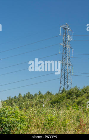 Electricity pylon set against a blue summer sky. - Stock Image