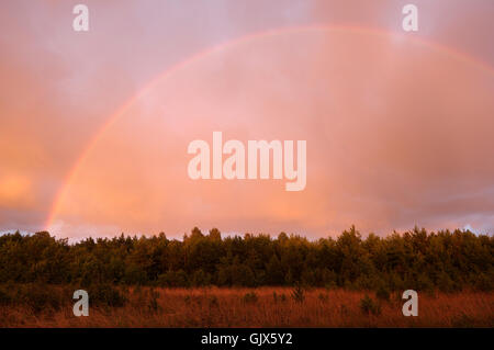 Rainbow, Stormy Weather, Evening Sun. Pärnu county. 10th August 2016. Estonia - Stock Image
