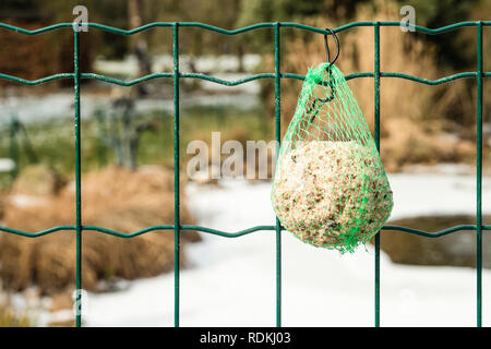 Detail of food for birds hanging on a fence so they can have something to eat during winter. - Stock Image