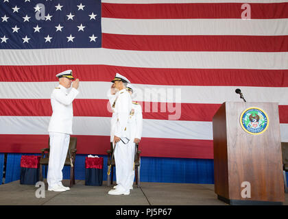 "180824-N-IK388-0044 NORFOLK (Aug. 24, 2018) Adm. Chris Grady, commander, U.S. Fleet Forces Command, left, returns Vice Adm. Andrew ""Woody"" Lewis' salute as Lewis assumes command of U.S. 2nd Fleet aboard the nuclear aircraft carrier USS George H.W. Bush (CVN 77). U.S. 2nd Fleet will exercise operational and administrative authorities over assigned ships, aircraft and landing forces on the East Coast and North Atlantic. (U.S. Navy photo Mass Communication Specialist 2nd Class Stacy M. Atkins Ricks/Released) - Stock Image"