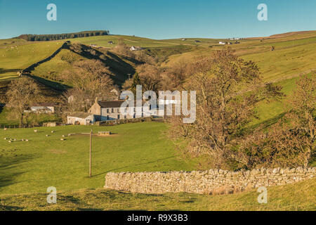 North Pennines AONB landscape, Dirt Pit farm, Ettersgill, Teesdale in strong winter sunshine and a clear blue sky - Stock Image