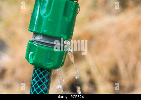Leaking garden hosepipe spray gun hose - as metaphor for 2018 heatwave and drought, and hosepipe ban. - Stock Image