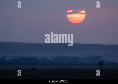 Sunrise at the African savannah - Stock Image