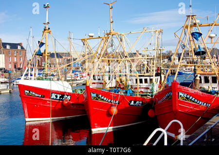 Three red fishing boats, the Ubique, the Marigold and the Queensberry, tied up at Arbroath harbour, Angus, Scotland. - Stock Image