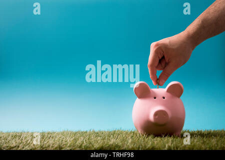 Putting coin into the piggy bank on green grass and blue sky - Stock Image