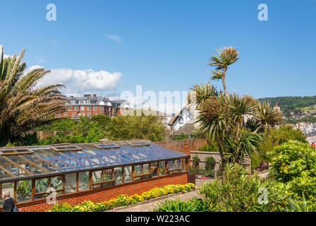 Greenhouse with summer flowering borders in sub-tropical Connaught Gardens, Sidmouth, a popular south coast seaside town in Devon, south-west England - Stock Image