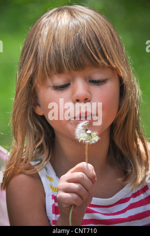 young girl blowing dandelion seed nature green environment growth blow - Stock Image